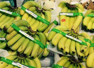 banana73515947pm
