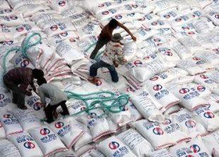 rice_export54260453pm