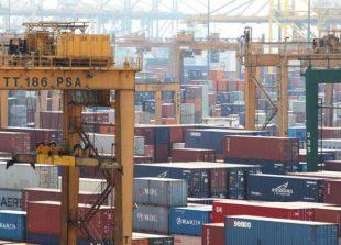 sg-exports-nodx-15822094