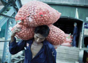 onion-market