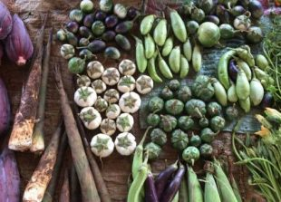 Fruit-and-vegetable-produce-in-Laos-696x364